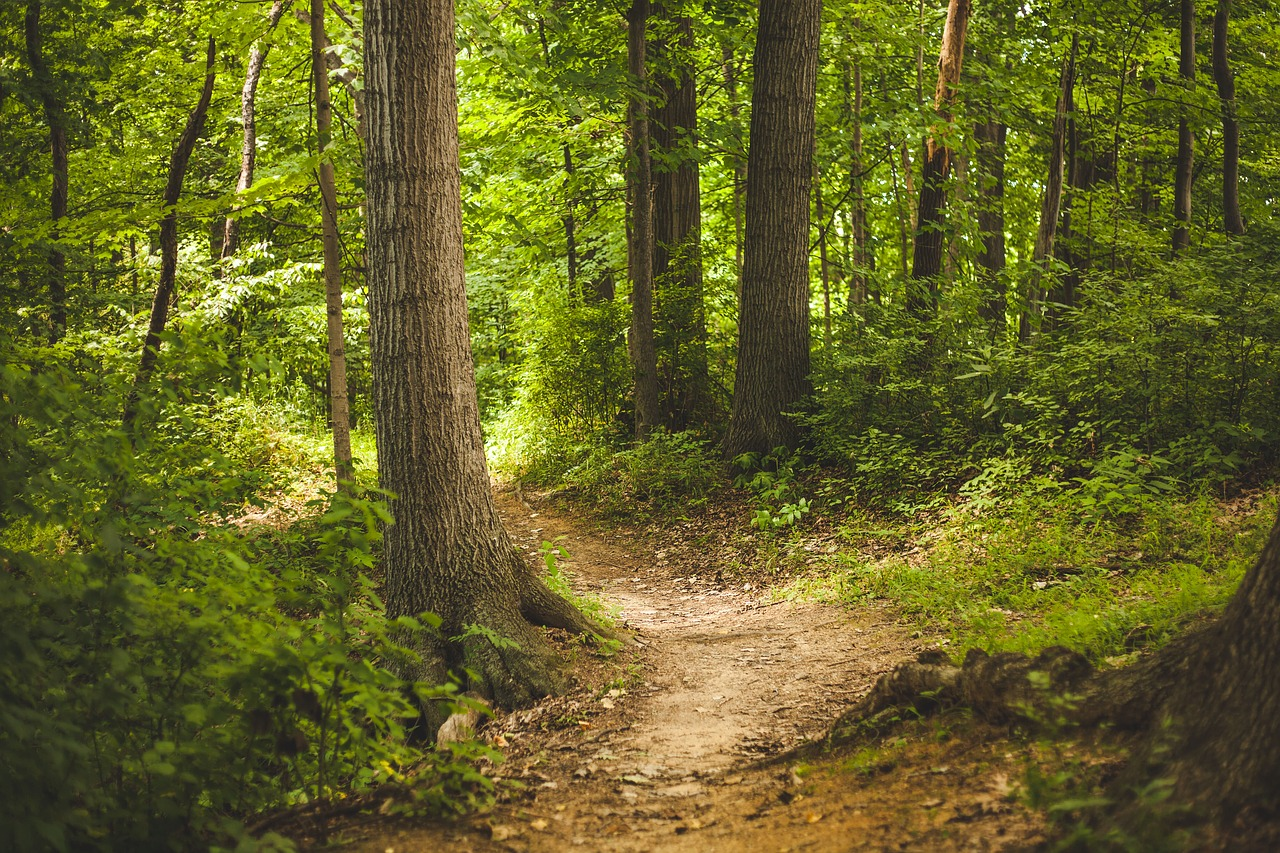 better trails with technology and planning