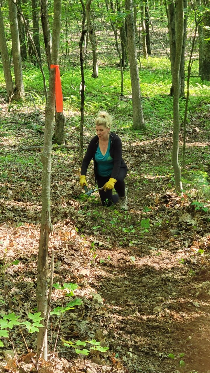 trail proects - trail building and design